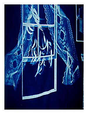 Blueprints cotton cyanotype fabric malvernweather Images