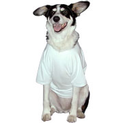 Doggie T-shirts